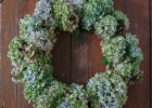 Dried Hydrangea Wreath Making